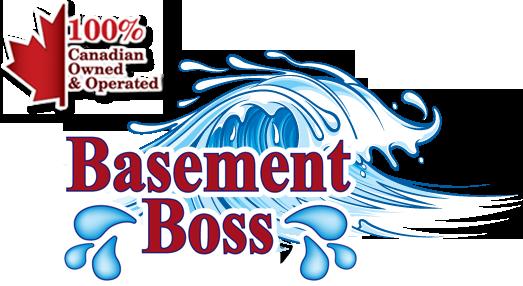 Basement Boss