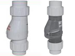 2 check valves