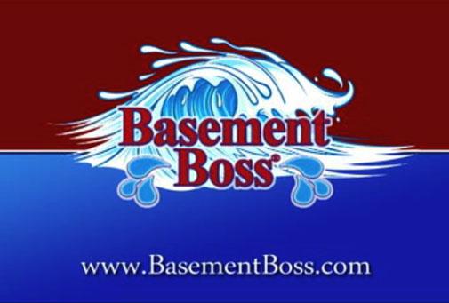 basement_videolink