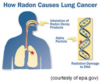 RadonPix web