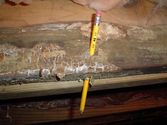 structurally-damaged-wood-crawlspace-lg